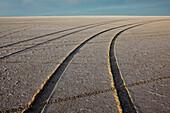 Car tyre tracks on the surface of the Bonneville Salt Flats. Speed Week, an annual amateur auto racing event in Utah, USA, Bonneville Salt Flats landscape