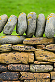 A close up of a traditional construction, a dry stone wall, with stones built up without mortar. Top stones places vertically., Detail of stone wall on Mainland Orkney Island in Scotland