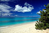 Deserted Darkwood Beach under blue sky, Caribbean Sea, Antigua, West Indies, Caribbean, Central America, America