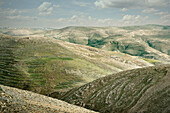 Green barren mountains at the back country of the Dead Sea, habitat of beduins, Mount Nebo, Jordan, Middle East, Asia