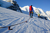 Roped party ascending on Cambrena glacier, ascent to Piz Palue, Grisons, Switzerland