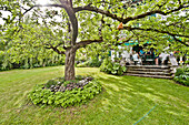Tree in the middle of a garden with people on veranda, Magnetsried, Weilheim-Schongau, Bavarian Oberland, Upper Bavaria, Bavaria, Germany