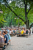 Beer garden, Augustiner Keller, Munich, Upper Bavaria,  Bavaria, Germany