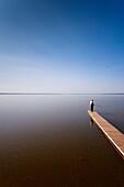 Russia, Yaroslavl Oblast, Golden Ring, Pereslavl-Zalessky, Lake Plescheevo, fishermen, NR
