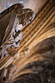 Spain, Castilla y Leon Region, Leon Province, Leon, Catedral de Leon, cathedral, detail of the cloisters