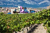 Spain, Basque Country Region, La Rioja Area, Alava Province, Elciego, elevated town view and Hotel Marques de Riscal, designed by Architect Frank Gehry