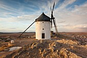 Spain, Castile-La Mancha Region, Toledo Province, La Mancha Area, Consuegra, antique La Mancha windmills, late afternoon