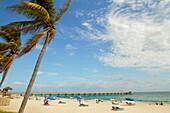 Florida, Deerfield Beach, palm trees, sand, public, Atlantic Ocean, coast, shore, surf, sunbathers, Deerfield Beach International Fishing Pier
