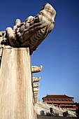 Stone carved dragon heads decorated the White marble base of Hall of Supreme Harmony Tai He Dian  Forbidden City  Beijing  China