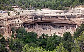 Cortez, Colorado - The Cliff Palace dwelling in Mesa Verde National Park  The park features cliff dwellings of ancestral Puebloans that are nearly a thousand years old