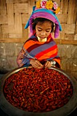 Closeup of a Longneck girl holding a bowl of chillie peppers Approximately 300 Burmese refugees in Thailand are members of the indigenous group known as the Longnecks The largest of the three villages where the Longnecks live is called Nai Soi, located ne