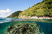 Coast of Dominica, Caribbean Sea, Dominica, Leeward Antilles, Lesser Antilles, Antilles, Carribean, West Indies, Central America, North America