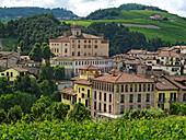 Weinanbau in Barolo, Castello di Barolo, Provinz Piemont, Italien