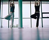 Yoga exercise, Langenlois, Lower Austria, Austria