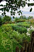 Bauerngarten mit Gartenschlauch für die Bewässerung der Pflanzen und Blumen, Garten, Steiermark, Österreich
