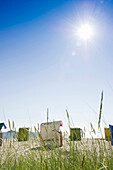 Beach grass and beachchairs on the beach, Wyk, Foehr, North Frisian Islands, Schleswig-Holstein, Germany, Europe