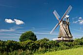 Historic windmill, Wrixum, Foehr, North Frisian Islands, Schleswig-Holstein, Germany, Europe