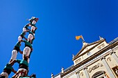 Castellers de Vilafranca ´Castellers´ building human tower, a Catalan tradition Festa de Santa Tecla, city festival  Plaça de la Font Tarragona, Spain