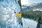 Elijah Weber ice climbing a route called Fat Chance which is rated WI-3 and located at the Mummy Cooler Area in Hyalite Canyon near the city of Bozeman in southern Montana