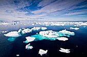 Icebergs and sea ice in the Weddell Sea on the eastern side of the Antarctic Peninsula during the summer months, Southern Ocean. Icebergs and sea ice in the Weddell Sea on the eastern side of the Antarctic Peninsula during the summer months, Southern Ocea