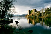 Loch Awe, Argyll and Bute, Scotland  Innis Chonnel Castle, evening light  Early Campbell stronghold at least 700 years old