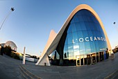 Valencia, Spain  Oceanographic Oceanografic designed by Felix Candela, integrated in the complex known as the Ciutat de les Arts i les Ciències City of Arts and Sciences