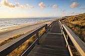 Boardwalk through dunes at evening, Germany, Schleswig Holstein, Sylt, North Frisian Islands, Kampen, North Sea