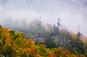 Fog and fall color in trees on mountain side in the Adirondack Mountains of New York