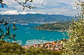 Lerici and the Gulf of La Spezia, Province of La Spezia, Liguria, Italy, Europe