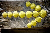 A yellow arrow made of scallop shells is displayed in a house to guide pilgrims in the French Way that leads to Santiago de Compostela, Spain. Hundred of thousands pilgrims walk every year to Santiago de Compostela using the French Way in the pilgrimage k