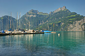 View from Sisikon village onto the Lake Lucerne with Niederbauen Chulm mountain and Urner Alps, Uri, Switzerland, Europe