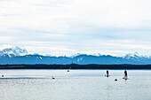 Stand-up-Paddlers on Lake Starnberg in April, overlooking Alps and Zugspitze, Fuenfseenland, Wettersteingebirge, Bavarian Alps, Upper Bavaria, Germany