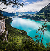 Lake Lucerne with the Ruetli meadow, the origin of Switzerland, in the background the town of Brunnen, Kanton of Uri, Central Switzerland, Europe