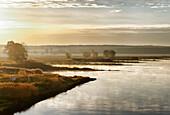 Oder river at sunrise, Land Brandenburg, Germany, Europe