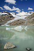 Floating ice in lake Gaulisee with Gauli glacier in the background, lake Gaulisee, UNESCO World Heritage Site Swiss Alps Jungfrau-Aletsch, Bernese Alps, Bernese Oberland, Bern, Switzerland