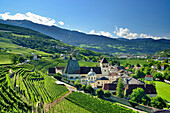 Neustift Convent with vineyards in the foreground, Neustift Convent, Brixen, South Tyrol, Italy