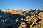 View from Sidelhorn to Oberaarhorn, Finsteraarhorn, Lauteraarhorn and Schreckhorn, Bernese Alps, Bernese Oberland, UNESCO World Heritage Site Swiss Alps Jungfrau-Aletsch, Switzerland