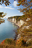 Chalk cliffs in autumn, Kieler Ufer, Jasmund National Park, Baltic coast, Ruegen island, Mecklenburg Western Pomerania, Germany, Europe