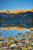 Brenta range reflecting in lake Lago Tovel, Lago Tovel, Brenta range, Dolomites, UNESCO World Heritage Site Dolomites, Trentino, Italy