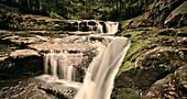 Wasserfall Liffey Falls, Tasmanien, Australien, Langzeitbelichtung