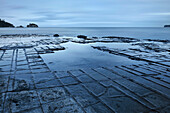 Pirates Bay with Tessellated Pavement, view at Ocean, natural wonder, Eaglehawk Neck around Port Arthur, Tasmania, Australia