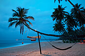 Deserted beach at dusk, crooked palm tree with hammock, blue hour, Tangalle, Hambantota District, Sri Lanka, Indian Ocean, long time exposure