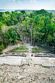 View from the top of structure N10-43, also known as El Castillo Maya temple ruins at Lamanai 300BC, 1500AD Lamanai Belize