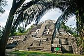 Structure N10-43, also known as El Castillo Maya temple ruins at Lamanai 300BC, 1500AD Lamanai Belize