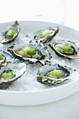 Oysters on bed of ice. Oysters, Wasabi Roe, Lime Zest, Rock Salt