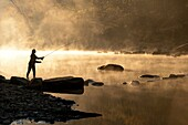 Silhouette profile of a young woman casting with a fly fishing rod by a stream early in the morning, north central, Alabama, USA.