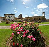 Monte San Savino, Italy, Europe, Tuscany, Toscana, building, construction, meadow, flowers. Monte San Savino, Italy, Europe, Tuscany, Toscana, building, construction, meadow, flowers