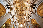UK, United Kingdom, Great Britain, Britain, England, Europe, Oxfordshire, Oxford, Oxford University, Christ Church College, Christ Church Cathedral, Christ Church, University, Education, Cathedral, Cathedrals, Interior. UK, United Kingdom, Great Britain,