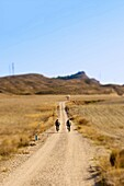 activity, adventure, bicycle, cycling, dusty, environment, happiness, health, hobby, landscape, leisure, mountain biking, outdoors, road, space, Spain, sport, trail, weekend, K08-1731105, AGEFOTOSTOCK