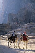 al-Siq narrow gorge is the main entrance to the ancient city of Petra, Jordan, Middle East, Asia